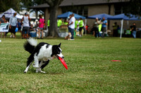 Delgado Animal Expo