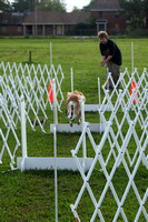 Flyball March 2012